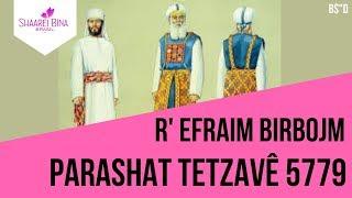 Parashá Tetzavê