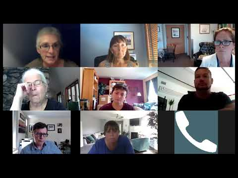 CRTF Health subcommittee August 11, 2020
