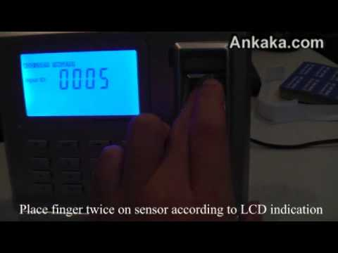 How to Use Fingerprint Time Attendance System