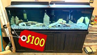 *MY SECRETS REVEALED* Best Deals On Fish Tanks And Aquarium Supplies