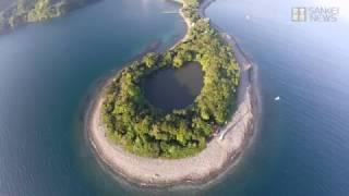 海に囲まれた神秘の淡水静岡県沼津市の神池