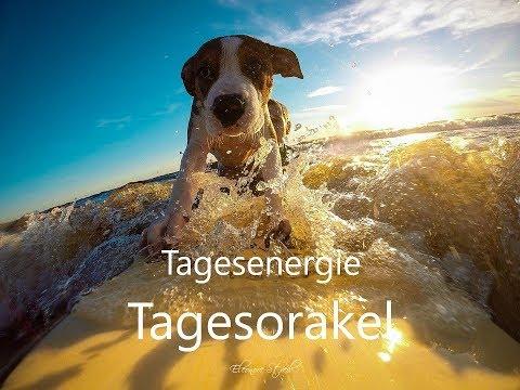 Tagesorakel - Donnerstag 13.06.2019