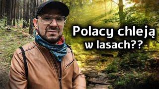 DzA. Polacy Lubią Chlac w Lesie