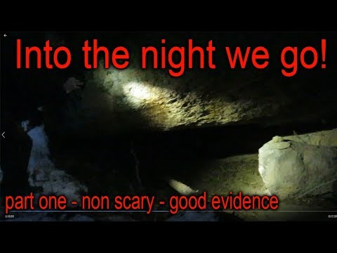 Bigfoot Nighttime Investigation - part one (non scary)
