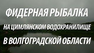 Рыбалка на дону в волгоградской области базы рыболовные
