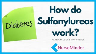 How do Sulfonylureas work? Diabetes Management