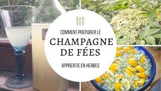 Comment faire le champagne des fées