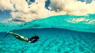 Jak Nagrywać Takie Genialne Filmy Pod Wodą?