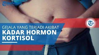 Sindrom Cushing, Sekumpulan Gejala yang Terjadi akibat Tingginya Kadar Hormon Kortisol dalam Tubuh