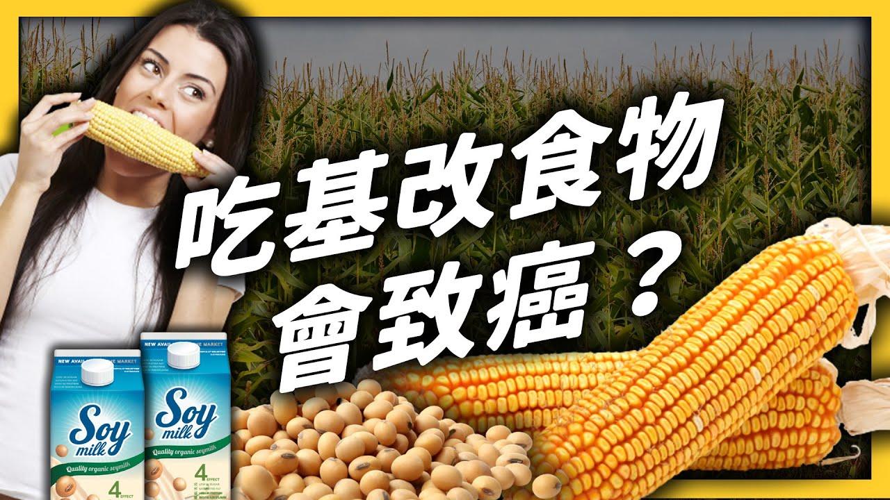 「基因改造」到底是什麼意思?吃基改食品會影響健康嗎?《 生難字彙大辭海 》EP 042|志祺七七