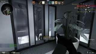 Смотреть онлайн Игра на КС ГО сервере с модом «куры-зомби»