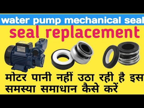 Water Pump Seals - Water Pump Shaft Seal Latest Price