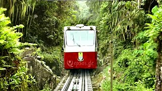 Mountain Train Adventure on Penang Hill.
