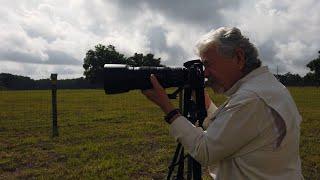 Meet the Artist: Nature Photography with Sonny Vergara on Florida's Adventure Coast (2021)