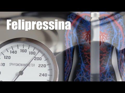 Os fatores de risco para o desenvolvimento da hipertensão essencial é