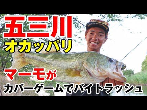 【BB TIME】五三川オカッパリ、マーモがカバーゲームでバイトラッシュ!