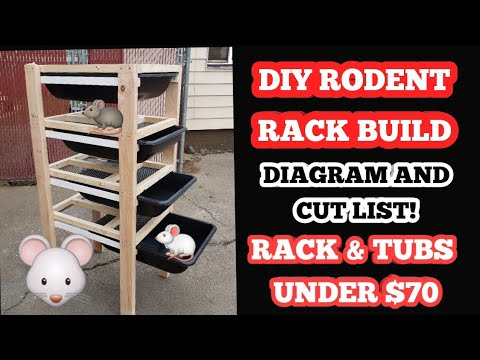DIY RAT RACK BUILD (RODENT) ... STEP BY STEP WITH DIAGRAM AND CUT LIST
