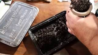 How To Pack Tangiers In An Egyptian Bowl