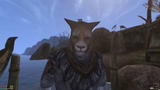 Morrowind S'virr