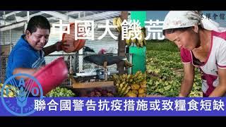 中國出現大饑荒?  聯合國警告緊急措施或導致糧食短缺