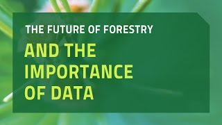 The Future of Forestry and the Importance of Data