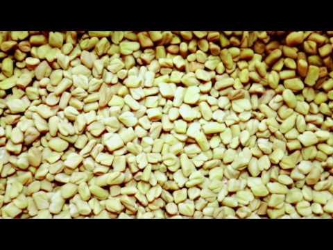 Goji-Beeren und Diabetes Bewertungen