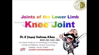 Articulations 9 knee most popular videos anatomy of knee joint ccuart Choice Image