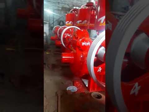 Neem Oil Expeller
