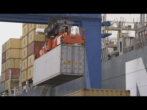 Trade deal with Japan boosts export hopes