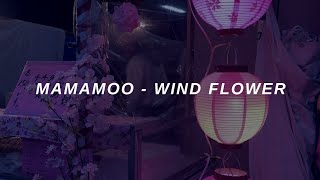 MAMAMOO (마마무) - 'Wind Flower' Easy Lyrics