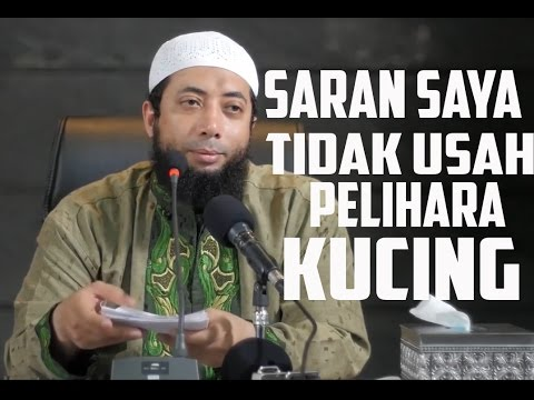 Saran Ustadz Dr Khalid Basalamah untuk Tidak Memelihara Kucing