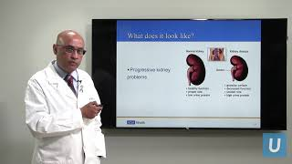Kidney Disease: What You Should Know | UCLAMDCHAT Webinars - Download this Video in MP3, M4A, WEBM, MP4, 3GP