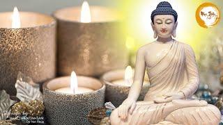 Nhạc Thiền Tĩnh Tâm - Nghe mỗi tối tâm an ngủ ngon, tiêu tan phiền muộn