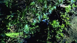 Kipatla - Programa 12, Pedro y la mora