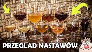 Przegląd win oraz nastawów - Podsumowanie 2019 roku