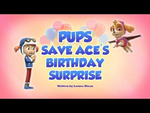 Щенячий патруль | 5 сезон 26 серия (А) | Pups Save Ace's Birthday Surprise