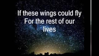 Birdy - Wings (Acoustic) Lyrics