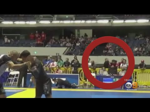 Video Shows MMA Fighter Ralph Gracie Attacking Fellow MMA Fighter