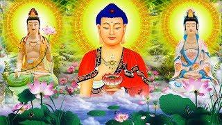 Mỗi Tối Nghe Kinh Phật Sám Hối Tiêu Trừ Nghiệp Chướng Gia Đạo Bình An Rất Linh Nghiệm