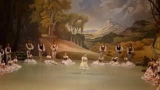 Giselle. Classical duet. Shakirova, Stepin