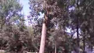 Fossil Rock RV Resort & Campground LLC Video