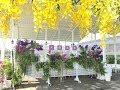 台湾で結婚式もできるレジャー農園。天使花園休閒農場~ANGEL GARDEN FARM~