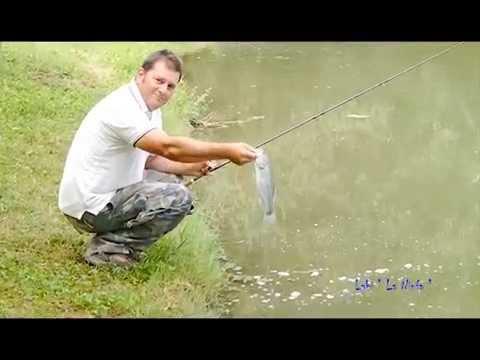 La pesca su video Volga Superiore