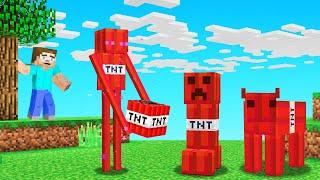 Minecraft BUT All MOBS = TNT!