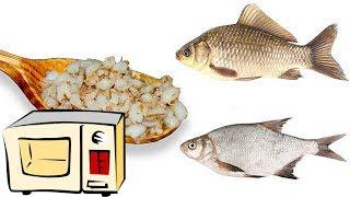 Как варить манку для рыбалки в микроволновке