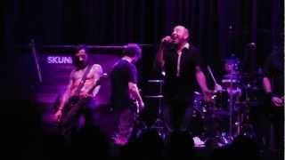 preview picture of video 'Skunk DF - Belgrado (Directo Valencia Rock City 2013)'