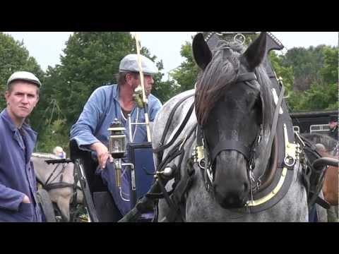 Haps Power Horse Augustus 2011