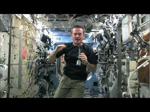 Does Food Taste Any Different In Space?