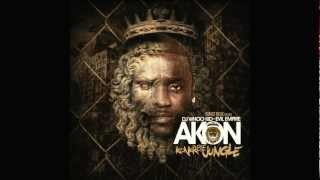 "Akon - Salute 100 Yall Feat Fabolous & Money J HD 2012 ""Konkrete Jungle"""