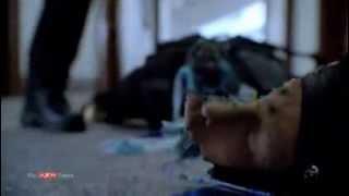 AXN Times - Almost Human Episodio 01x05
